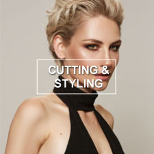 best-cutting-and-styling-toronto-thb-hover